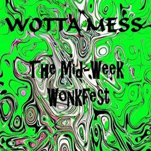 Wotta Mess @ The Mid-Week Wonkfest - Wonky.FM - 14.11.2013