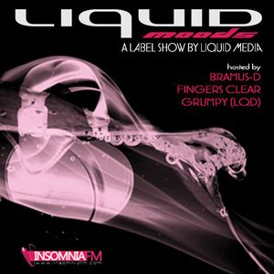 Bramus-D - Liquid Moods 064 pt.1 [Jan 1, 2015] on InsomniaFM.com