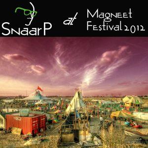 Snaar P @ Magneet Festival 2012