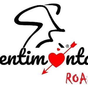 Sentimental Roads