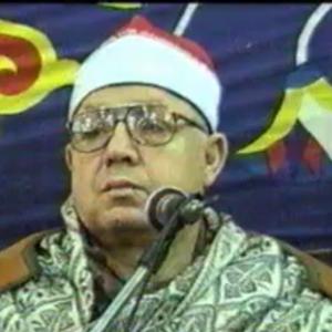 فتحي محمد سليمان