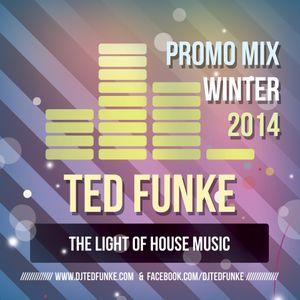 The Ted Funke Show #2 (January 2014)