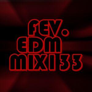FEV. EDM Mix 133