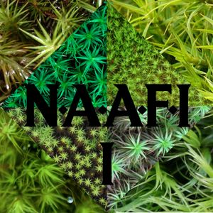 CANI LIVE SET @ N.A.A.F.I #1