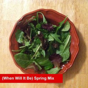 (When Will It Be) Spring Mix