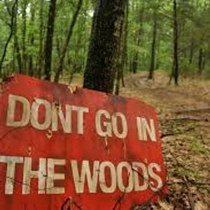 DJ E WOOD_Stay Out Da Woods Vol.2_feat. SERPIKO