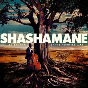 Museum of Grooves January 2017: Rastafari & Shashamane