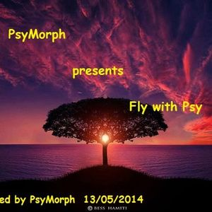 PsyMorph Presents Fly With Psy 2014 - 05 - 13