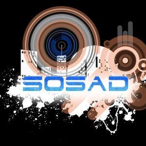 Acoustic Animals - Hardcore Pioneers (SoSad radio crew)