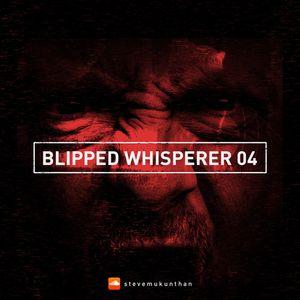 Blipped Whisperer 04