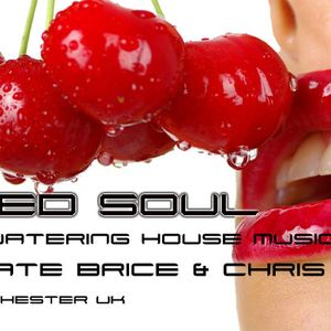 Baked Soul Show Radio Show 16/12/12