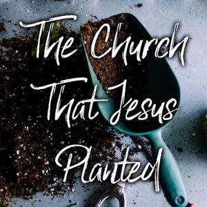 The Church That Jesus Planted   David Lyon