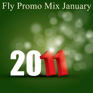 Dj Fly Promo Mix January 2011