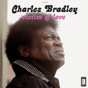 Staring at the Spotlight: A Tribute to Charles Bradley