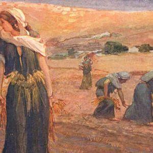 La celebración de Shavout [Fiesta de las Semanas, o Pentecostés] 2016