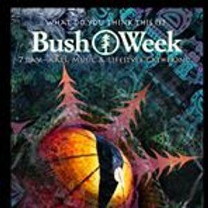 EEGORHYTHMS CLOUDCAST #2 : EEGOR @ Bushweek Festival 2015