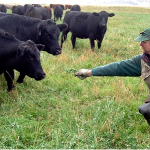 #64 Grass Fed Beef from the Mountains of Idaho, with Glenn Elzinga from Alderspring Ranch