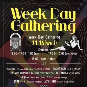 Weekday Gathering Sampler 02