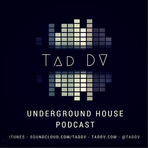 Underground House 001