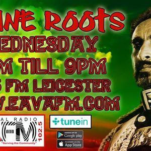 Divine Roots Show 21/12/16