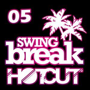 #5 HotCut from SwingBreak 2014 - Tommy Ausderanstalt