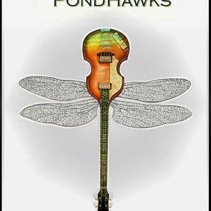 LIVE from Center Stage: Mario Novelli & Jorie Gracen (the PondHawks)