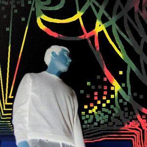 DUB COSMIC REGGAE N O B E Mix Mar 2011 promotional