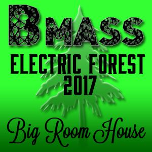 Bmass - Electric Forest 2017 Big Room