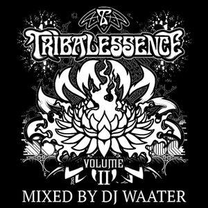 Tribalessence - Volume II (Mixed)