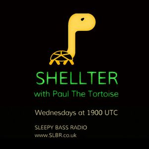 Shellter with Paul The Tortoise #38