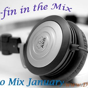 Dj E-fin Promo Mix @  January 2011