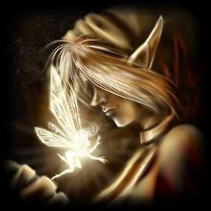 Le Papillon - Rencontre avec une elfe (04-11-2010)