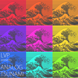 DJ Leo Presents Analog Tsunami
