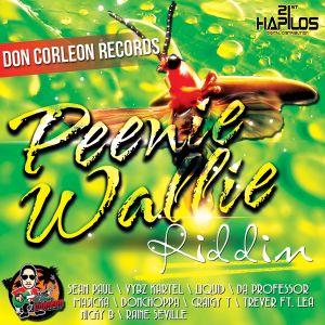 G.C sound - Peenie Wallie riddim megamix