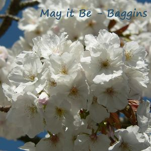 Baggins - May it be mix