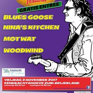 Hoeksch Rock & Blues festival - Henk Bijvoet
