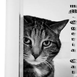 mAd Mike - Egeria Cat
