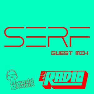 """DC Radio: SERF """"Straight Up, Get Down"""" Guest Mix"""