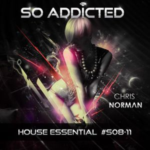 """SO ADDICTED"" House Essential #S08-11 by Chris Norman"