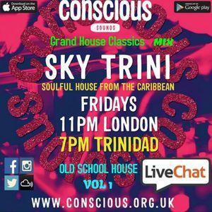CONSCIOUS OLD SCHOOL HOUSE MIX VOL 1 JAN 05TH 2018 BLENDS BY DJ SKY TRINI