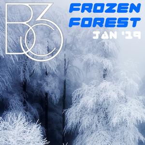 BcIII - Frozen Forest Jan '19
