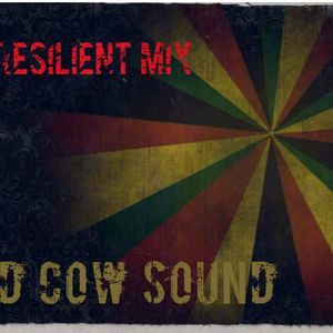 The Resilient Mix! 1