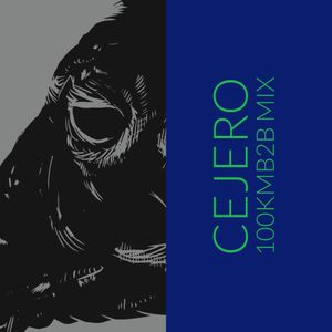 CEJERO MIX FOR PYTHIA'S JOURNALS