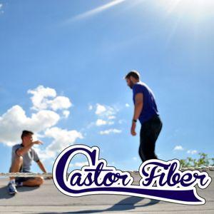 Castor Fiber - Deepisco vol. 3 (summer)
