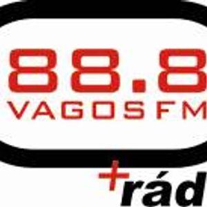 Voz da Freguesia 25-06-2015