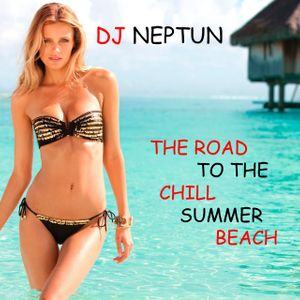 Dj. Neptun - The Road To The Chill Summer Beach