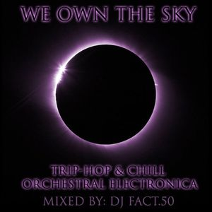 We Own the Sky - Trip-Hop and Chill Orchestral Electronica
