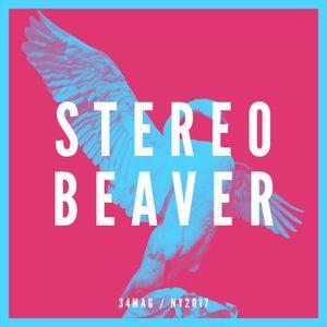 34mag New Year Mixes 2017 - Stereobeaver