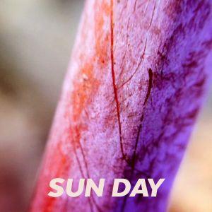 SUN DAY – 03