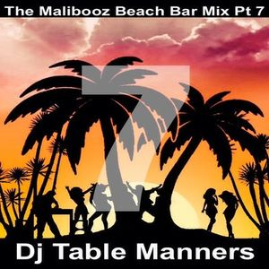 Pt 7. The Malibooz Beach Bar Mix (Tech House Edition)